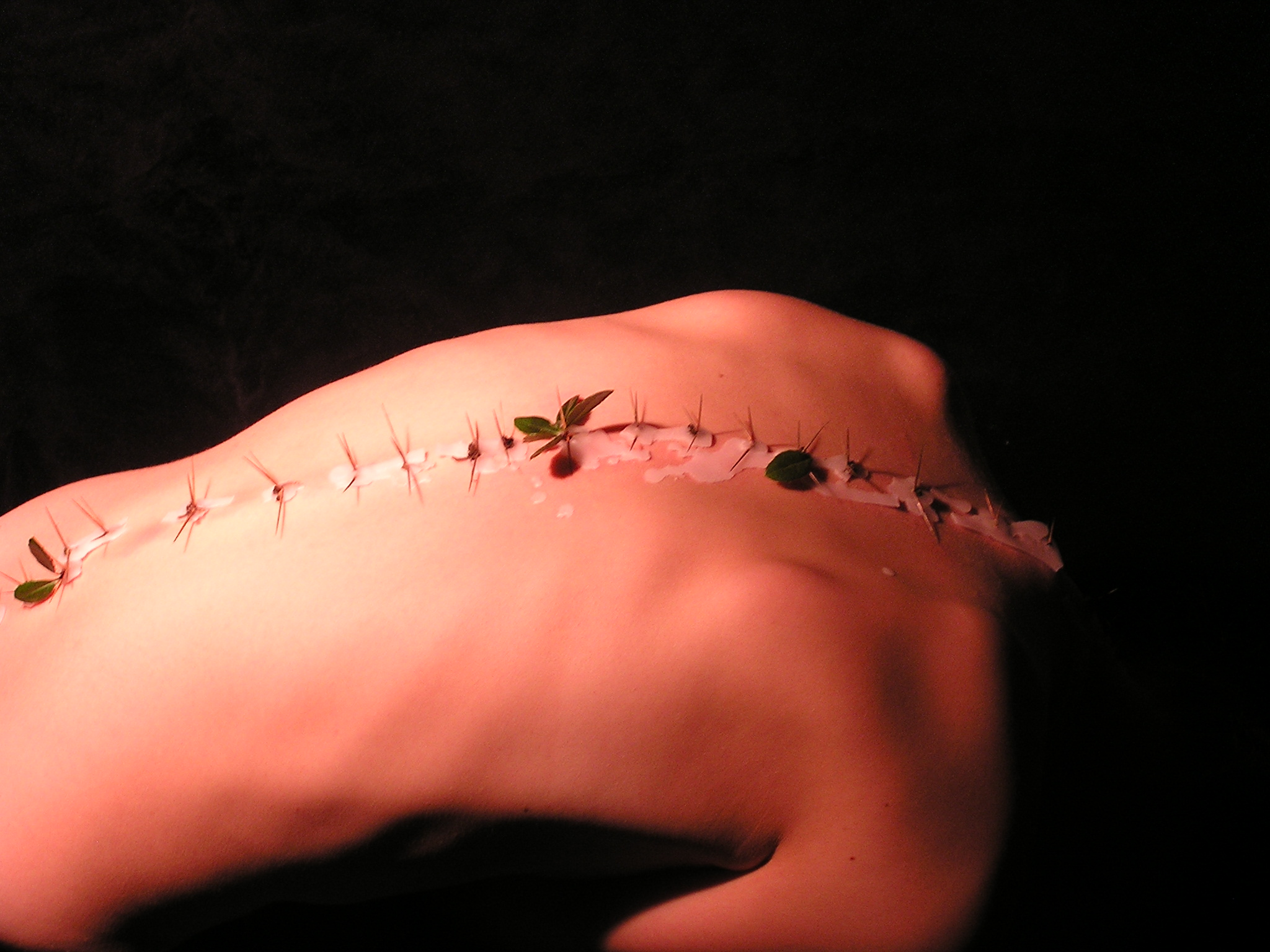 """thorn/spine"" embodiment experiment by D. Allen, executed and documented in collaboration with Hannah Sabri Barco and Andrew Barco, Durham, North Carolina, 2006"